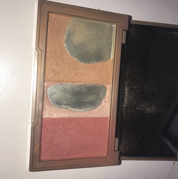 Urban Decay Naked Flushed uploaded by faith p.