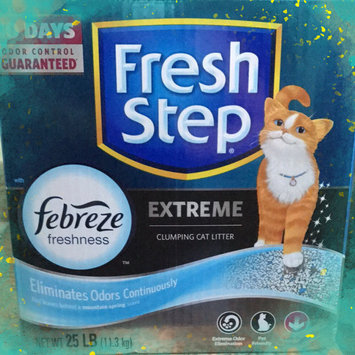 Photo of Fresh Step Lightweight Extreme Cat Litter, Scented (29.4 lb.) uploaded by Jessica C.