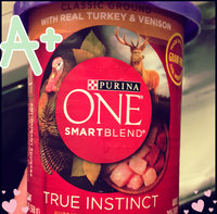 Purina ONE SmartBlend True Instinct Classic Ground with Real Turkey & Venison Dog Food 13 oz. Can uploaded by Danielle S.