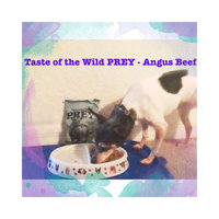 Taste of the Wild PREY Angus Beef Formula for Dogs uploaded by Stephanie B.