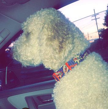 BarkBox uploaded by Brittany G.