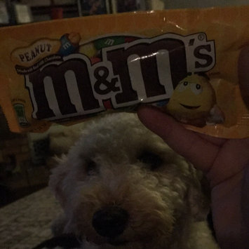 Photo of M&M'S® Peanut uploaded by katie s.