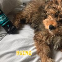 Animology Refreshing Puppy Spray, 8.4 fl. Oz. uploaded by Angellica B.
