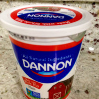 Dannon® All Natural Plain Nonfat Yogurt uploaded by Nka k.