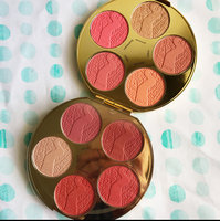 tarte Limited-Edition Blush Bazaar Amazonian Clay Blush Palette uploaded by Jacquelyn H.
