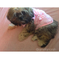 Bond & Co. Pink Faux Fur Bomber Jacket for Dogs, XX-Small uploaded by Ella N.