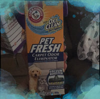 Arm & Hammer Plus Oxi Clean Dirt Fighters Pet Fresh Carpet & Room Odor & Dirt Eliminator uploaded by Wendy C.