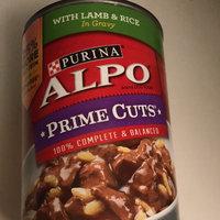 Alpo Alpo 13.2 Ounce Turkey Food 12542 by Purina uploaded by Briana J.