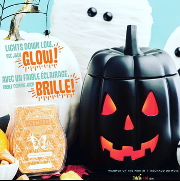 Photo of Scentsy Warmers uploaded by Jessi S.
