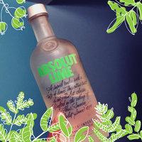 Absolut Vodka Lime  uploaded by Deborah S.