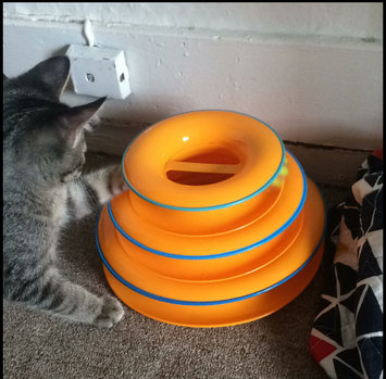 Photo of Petstages Tower Of Tracks Cat Toy Orange 317 uploaded by Ella P.