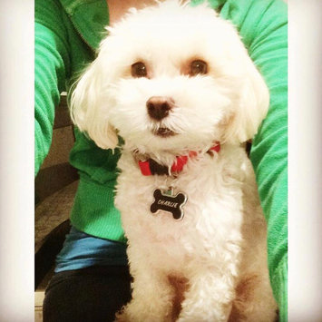 Photo of ASPCA uploaded by Deanna K.