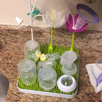 Boon Inc. Boon Twig Grass and Lawn Drying Rack Accessory - White uploaded by Kendall K.