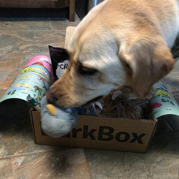 BarkBox uploaded by Megan H.