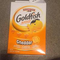 Goldfish® On The Go! Cheddar uploaded by Ashley E.
