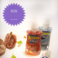 Dial Antibacterial Liquid Hand Soap with Moisturizer uploaded by Meghna S.