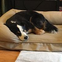 K9 AdvantixA II Flea & Tick Dog Treatment uploaded by Samantha K.