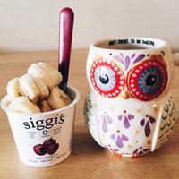 Siggi's Yogurt Icelandic Style Strained Non-Fat Vanilla uploaded by Paige J.