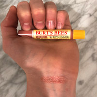Burt's Bees Lip Shimmer uploaded by Claudia Y.