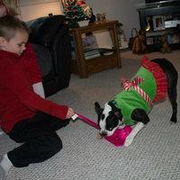 Kong Snugga Wubba Dog Toy - Large - 1 Toy uploaded by Natalie K.