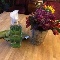 method all-purpose cleaner lime & sea salt uploaded by Samantha O.