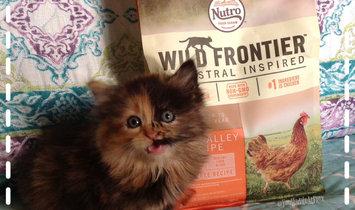 Photo of Nutro™ Wild Frontier™ Kitten Open Valley Recipe Cat Food 32 oz. Bag uploaded by Linden C.