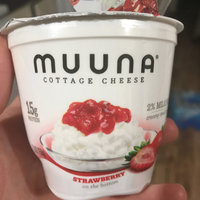 Muuna® 2% Milkfat Strawberry Cottage Cheese 5.3 oz. Cup uploaded by Dorothea B.