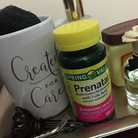 Spring Valley Prenatal Multivitamin/Multimineral Supplement uploaded by C A.