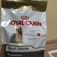 Royal Canin® Yorkshire Terrier 28™ Adult Dog Food 10 lb. Bag uploaded by Kenya L.