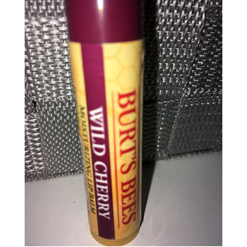 Photo of Burt's Bees Mint Cocoa Lip Balm uploaded by Haley C.
