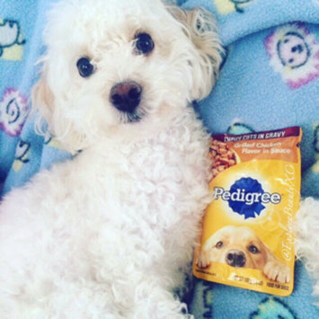 Photo of Pedigree® Choice Cuts in Gravy Grilled Chicken Flavor in Sauce Wet Dog Food uploaded by Anna M.