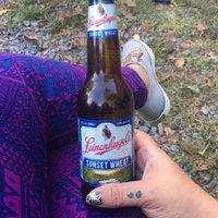 Leinenkugel's Sunset Wheat Beer uploaded by Trisha K.