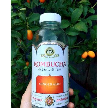 Photo of GT's Raw Organic Kombucha Gingerade uploaded by Samantha Q.