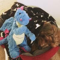 Sherpa Pet Group Quaker Pet GoDog - Mini Dragons Periwinkle Blue - 770800 uploaded by lauren 💋.