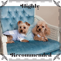 Greenies® Bursting Blueberry Teenie® Dog Treats uploaded by Krista L.