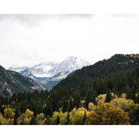 Nikon AF-S DX Nikkor 35mm f/1.8G Prime Lens - Black uploaded by Tyson R.