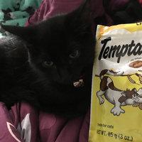 Whiskas Temptations Tasty Chicken Flavor Cat Treats uploaded by Mere A.