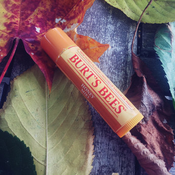Photo of Burt's Bees Moisturizing Honey Lip Balm uploaded by michelle w.