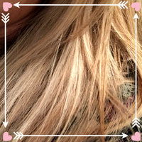L'Oréal® Paris Frost & Design® H85 Champagne Hair Frost Kit uploaded by Suzanne G.