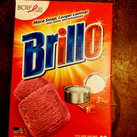 Brillo Steel Wool Soap Pads - 10 CT uploaded by Robbye B.