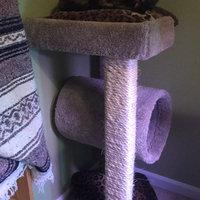 Petco Premium Tree Highrise for Cats, 26.7