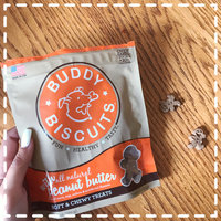 Cloud Star Corp. Cloud Star Buddy Biscuits Soft & Chewy with Peanut Butter 6 oz uploaded by Karla E.