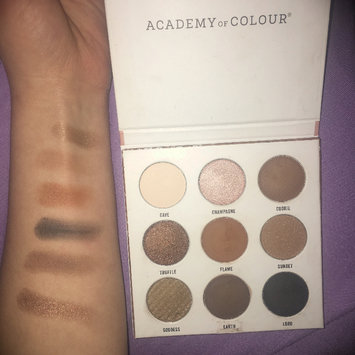 Photo of Academy of Colour 9 Shade Eyeshadow Palette, Multicolor uploaded by jurney h.