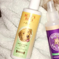 Burt's Bees Dogs Paw & Nose Lotion uploaded by Kara D.