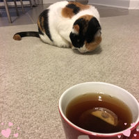 Celestial Seasonings Sleepytime Tea uploaded by Sarah B.