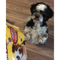 Pedigree Marrobone Real Bacon & Cheese Flavor Dog Care & Treats 24 Oz Stand Up Bag uploaded by Carrie L.