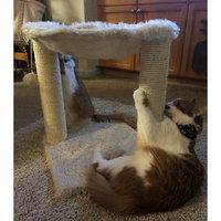 Trixie Baza Grande Cat Hammock uploaded by Alisha S.