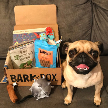 Photo of BarkBox uploaded by susana G.