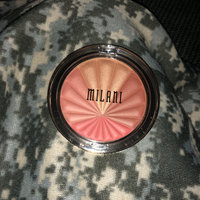 Milani Color Harmony Blush Palette uploaded by Sarah P.