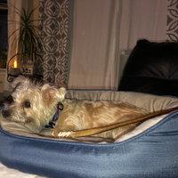 PetSmart uploaded by Corinne T.